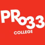 Pro33 logo