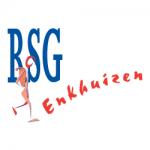 logo RSG Enkhuizen